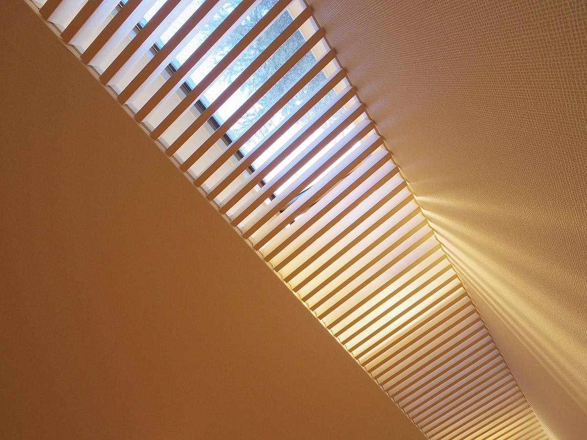 玄関側の天井は天窓になっていて優しい木漏れ日がはいる