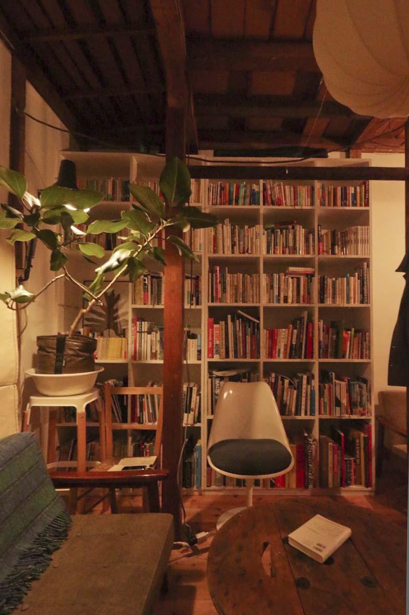 1階:本棚や植栽がよく映える空間(写真はリノベーション完了当時のもの)
