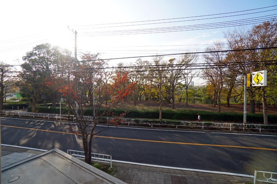 どの窓からも根岸森林公園の緑が見えます。夏はセミの鳴き声が聞こえ、秋は紅葉がきれい