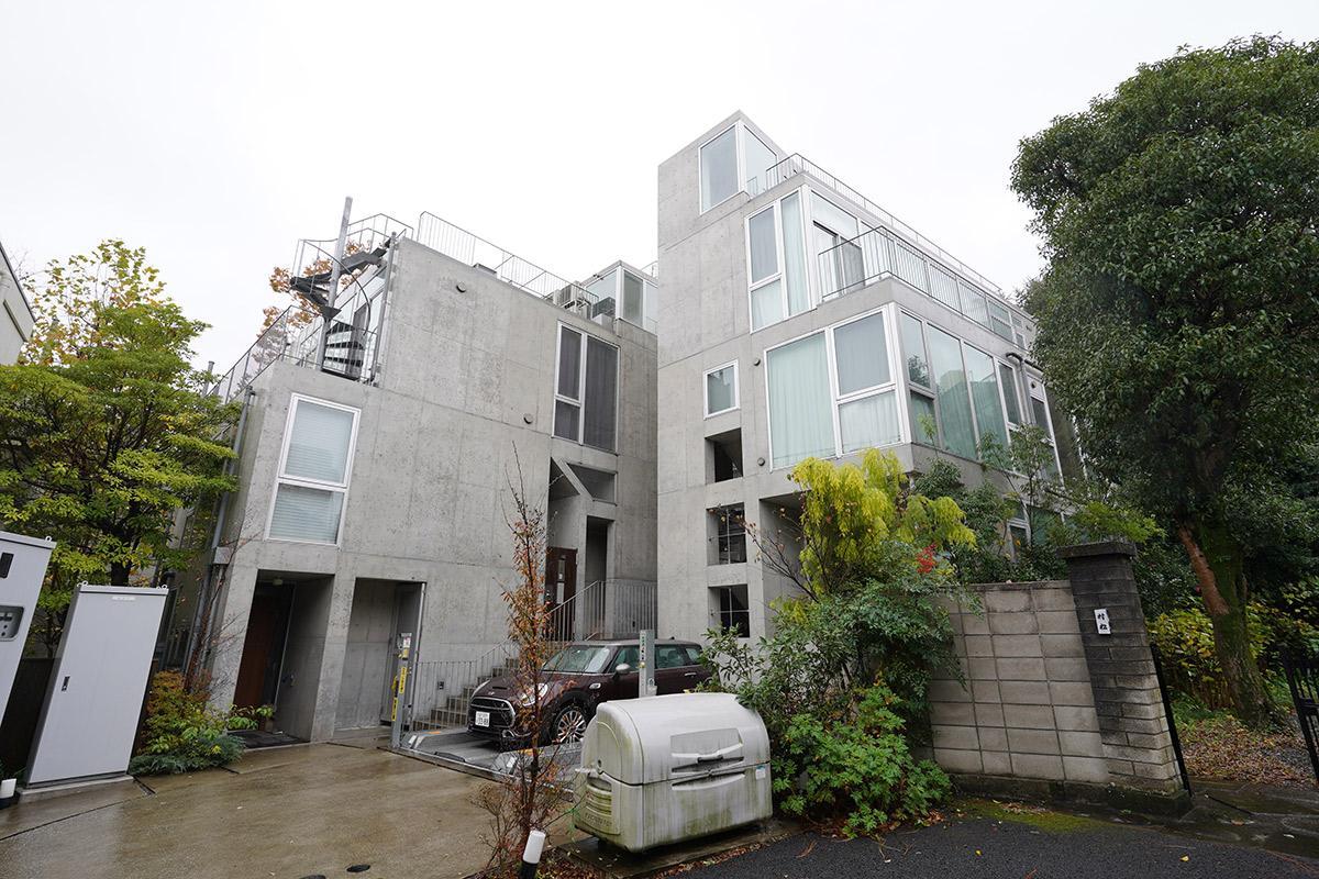コンクリート打ち放しの外観でも、温かみのある内装と緑により無機質な印象がありません