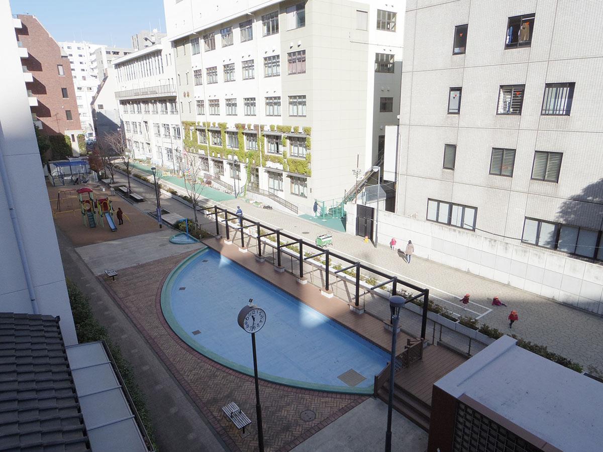 屋上から下を見ると公園。夏の間は青いプールに水が張られ、子どもで賑わう