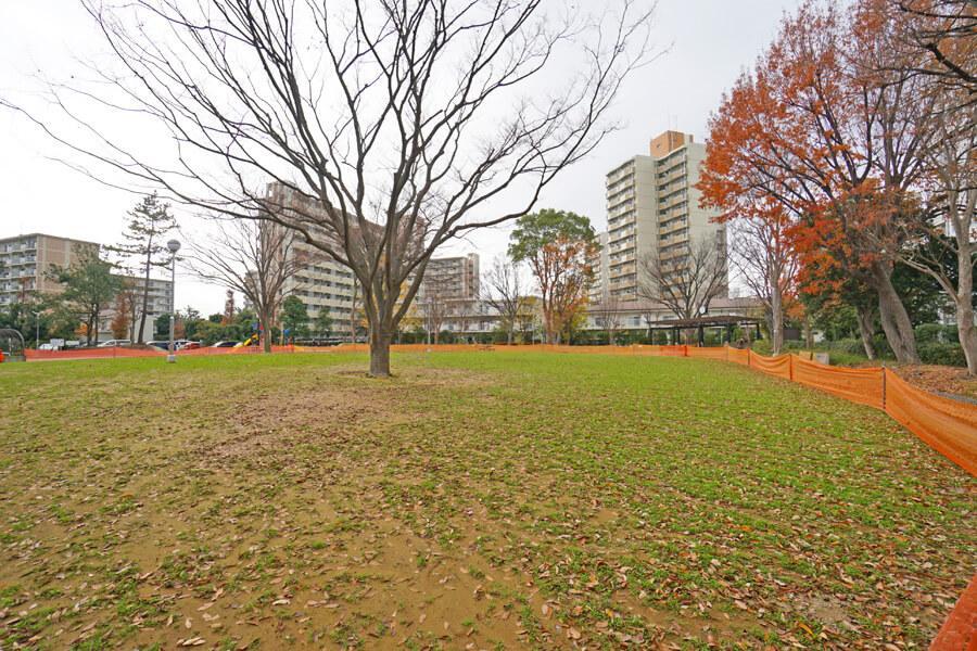 家のすぐ側にはこんな広場や公園があります