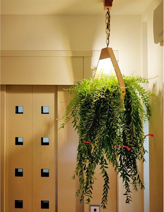 ホームエレベーターつき。1~3階は階段でも行き来可能、屋上へはエレベーターのみ