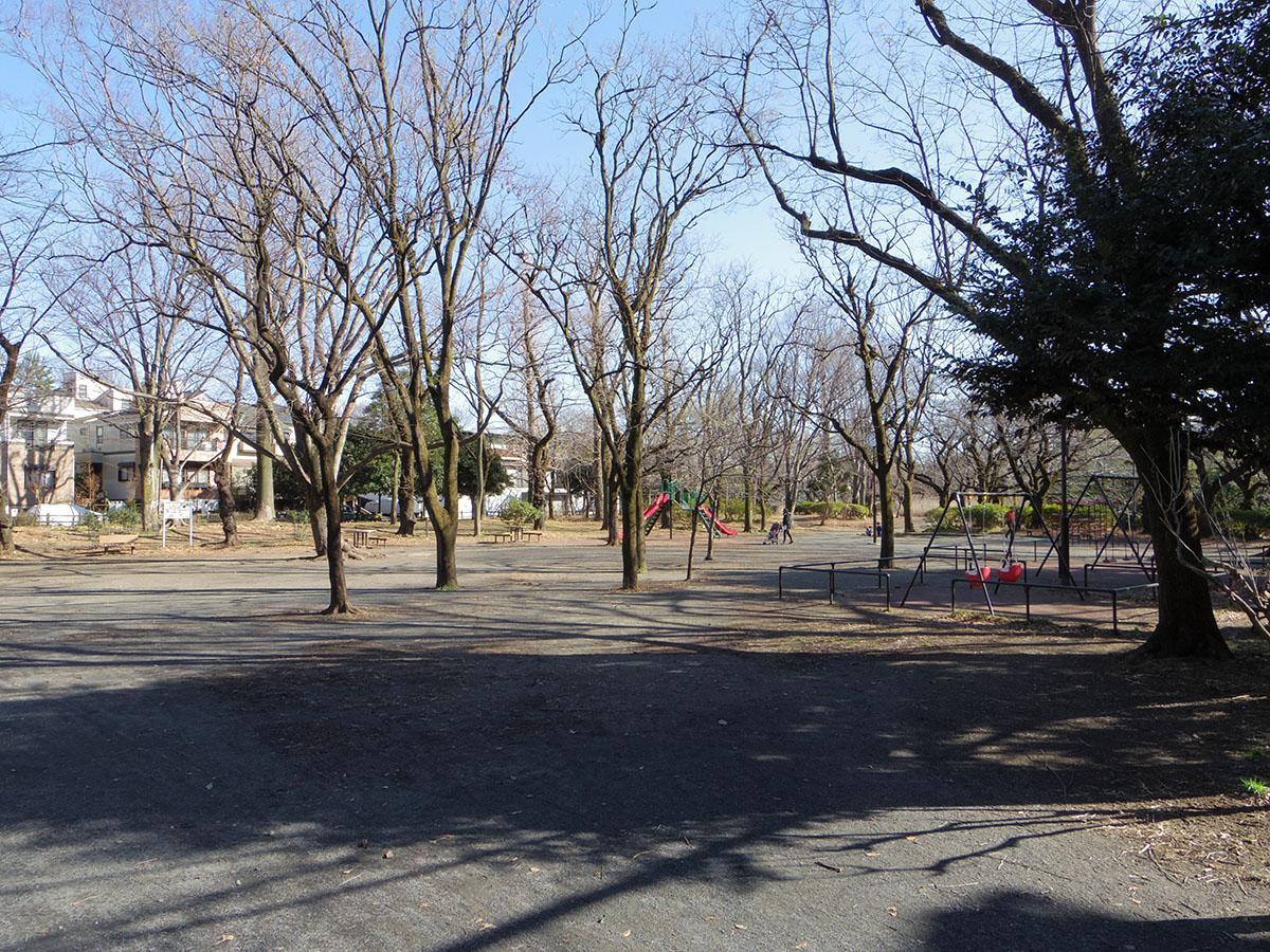 建物のすぐ隣は善福寺公園