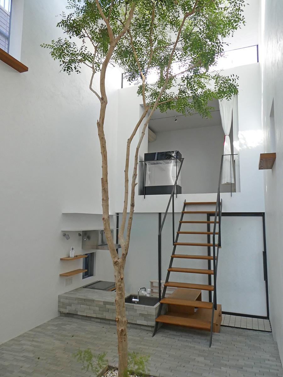 シンボルツリーはシマトネリコで管理も難しくないそう。階段を上がった部分がアトリエ