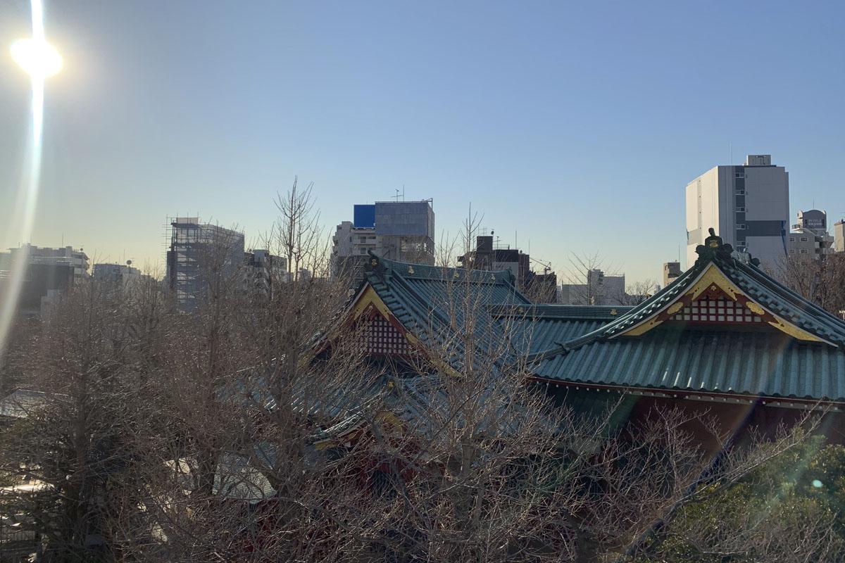 屋上から寺院側を眺めるとこんな感じ。夏は緑が迫ってきそう