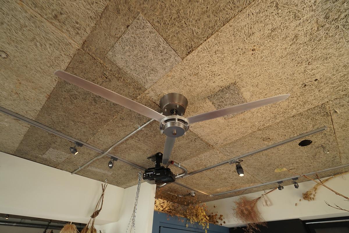 木毛セメント板現しの天井