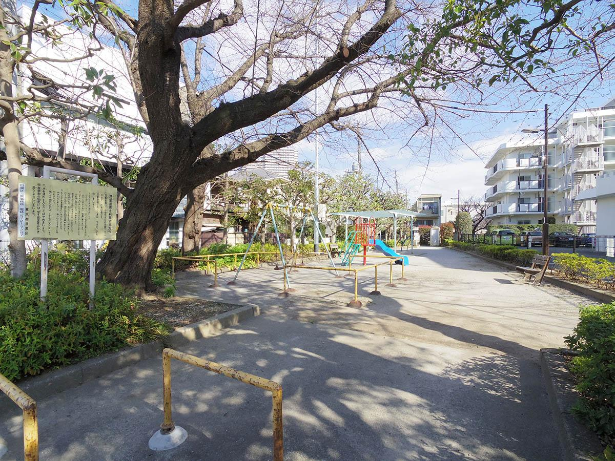 敷地内に公園があるので小さいこどもがいる方にもピッタリ