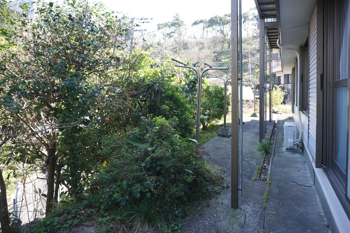 窓の先の木々、物干し竿あり