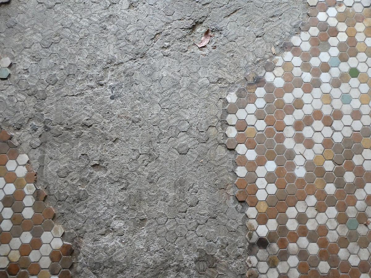 床の淡い色のハニカムタイルがかわいい。コンクリがあらわに