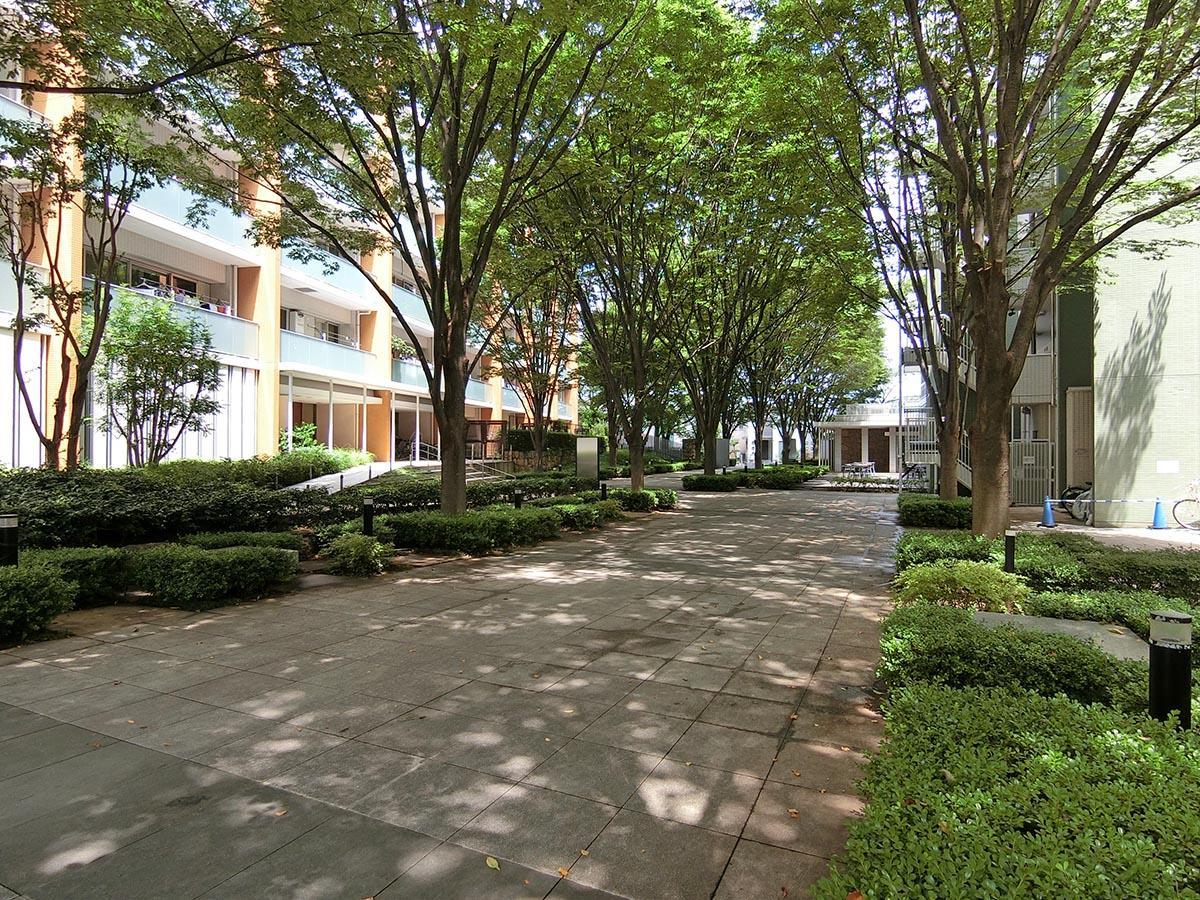 緑豊かな敷地。保護樹木などが植えられて、四季の移ろいを楽しめます