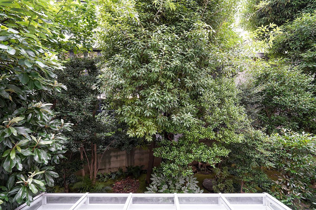 窓の外には敷地内の豊かな緑が見えます