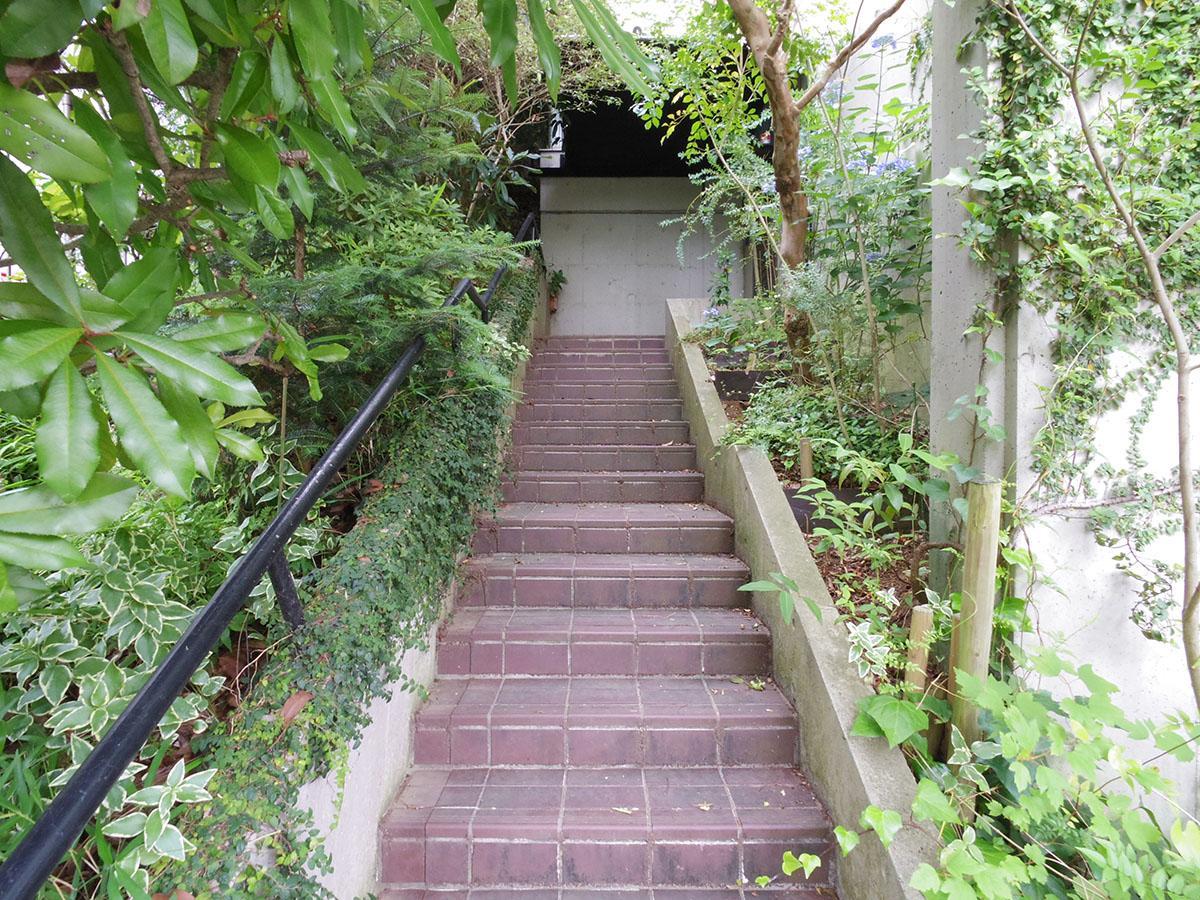 玄関へのアプローチは緑のトンネル。なんとオーナーが小さな苗から育てました