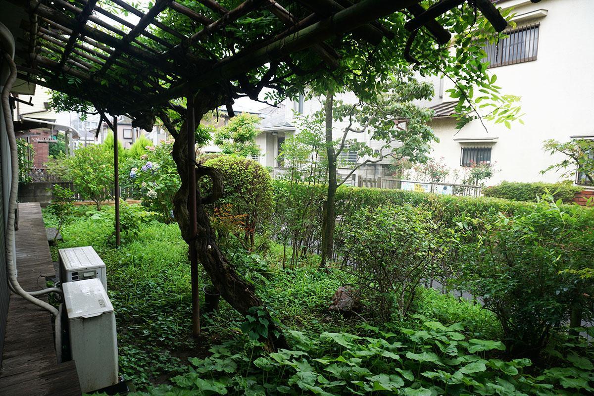 西側8畳の和室から見た庭
