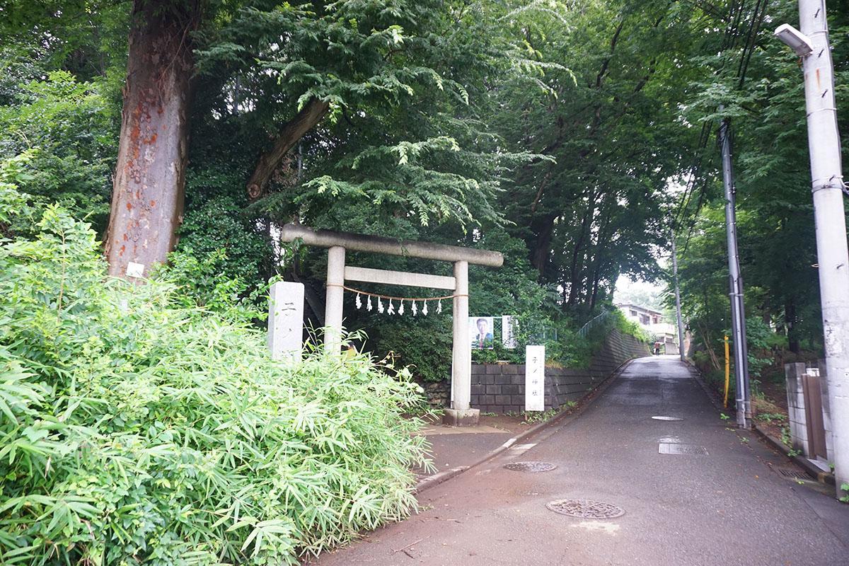 近くの神社:ダイナミックな緑道が気持ちいい。他にも四つ程神社がある