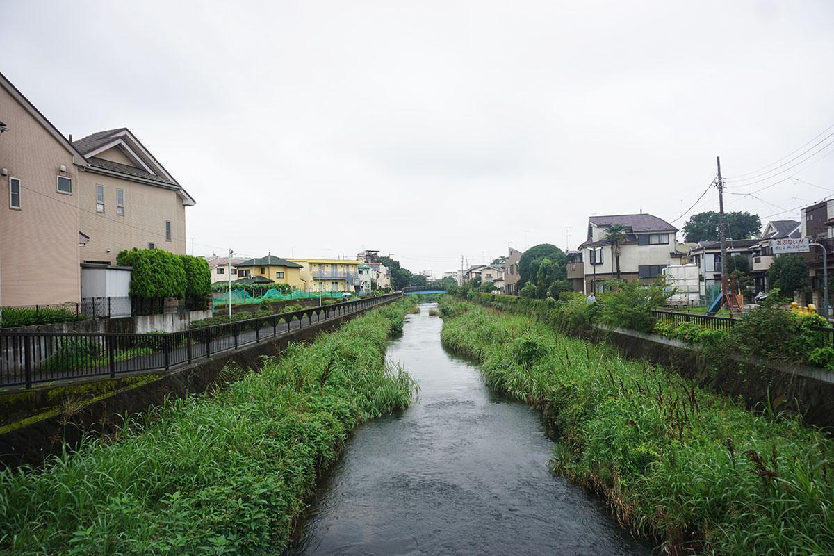 黒目川:ゆるゆると流れる