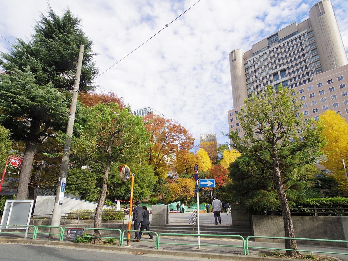 錦華公園。秋は紅葉がきれい