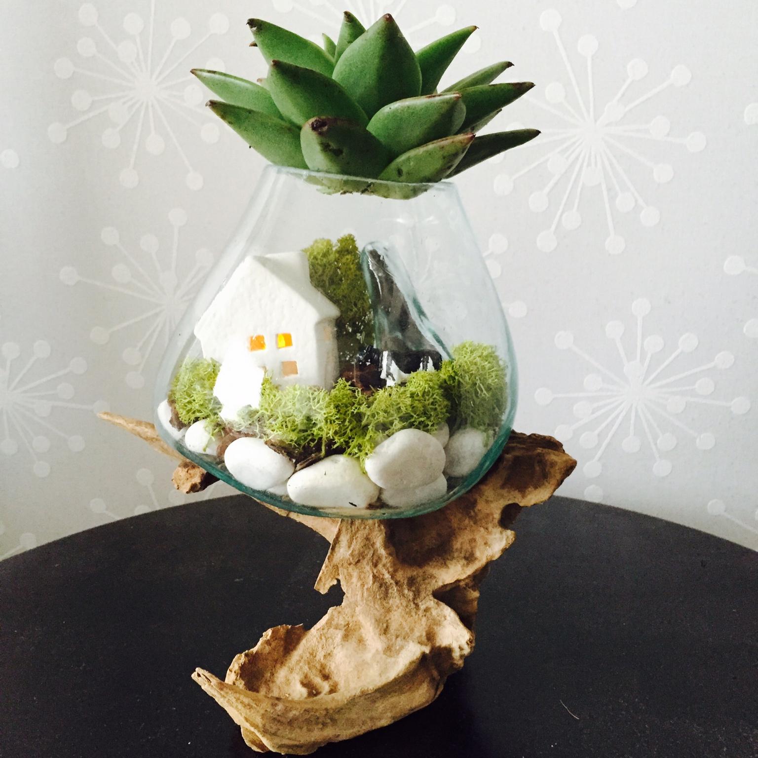 【テラリウムの作り方】苔や多肉植物で小さなお庭を作りませんか? | RoomClip mag | 暮らしとインテリアのwebマガジン