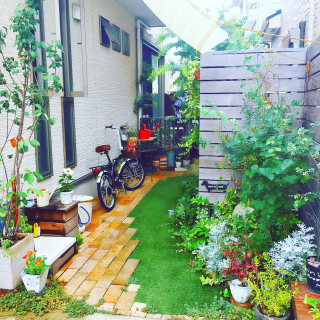 risaさんのお部屋写真 #1