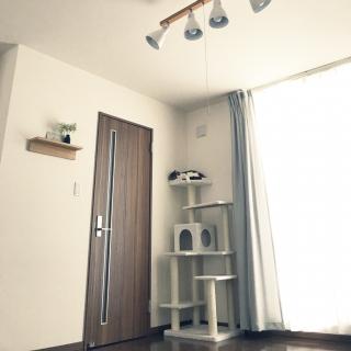 tansukeさんのお部屋写真 #1