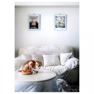 Yurinaさんのお部屋写真 #1