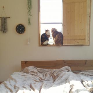 l..tomesanさんのお部屋写真 #1