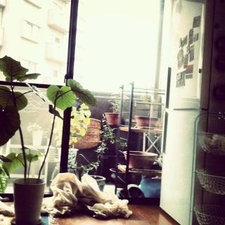 Misatoさんのお部屋写真 #1