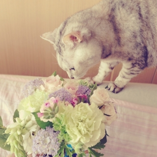 Yukiさんのお部屋写真 #1