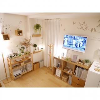 ponsukeさんのお部屋写真 #1