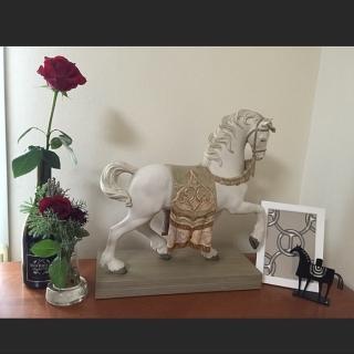 cheval_noirさんのお部屋写真 #1