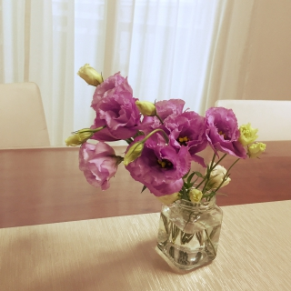 Tomokoさんのお部屋写真 #1