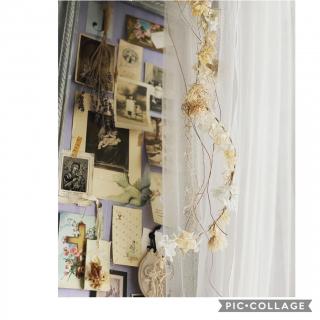 Rinrinfrenchさんのお部屋写真 #1