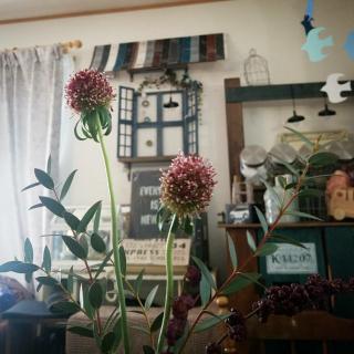 Nana40Nさんのお部屋写真 #1