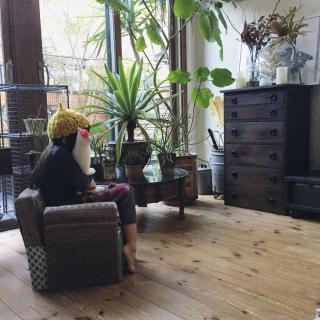 yururi-8239223さんのお部屋写真 #1