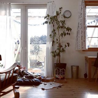 halさんのお部屋写真 #1