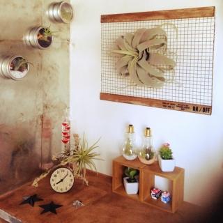 hotamaroさんのお部屋写真 #1