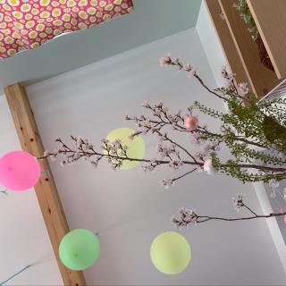 Kaoさんのお部屋写真 #1