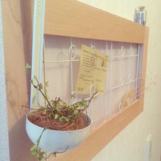 yurariさんのお部屋写真 #1