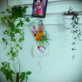 yo-chanさんのお部屋写真 #1