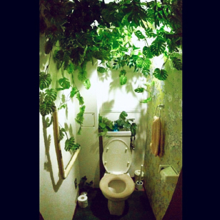 mizo_shinさんのお部屋写真 #1