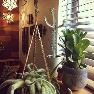 ANNAさんのお部屋写真 #1