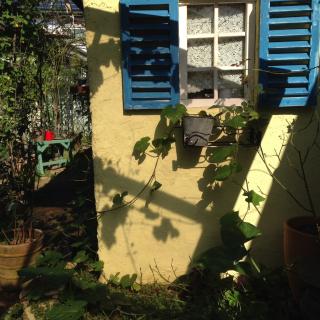 popoさんのお部屋写真 #1