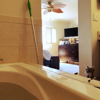 HomeOrganizeHawaiiさんのお部屋写真 #1
