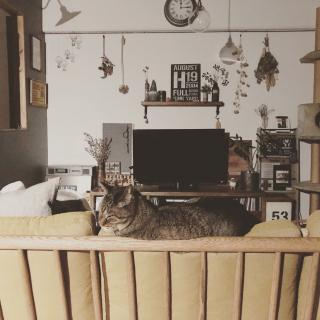 beansさんのお部屋写真 #1