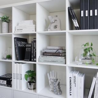 本棚のモノトーン