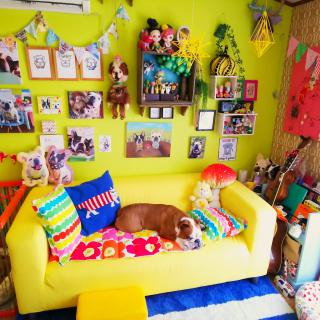 ayucchiさんのお部屋写真 #1