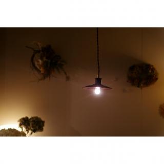 kicoriさんのお部屋写真 #1