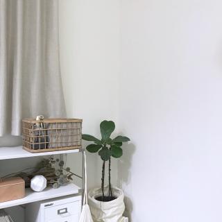 Ucoさんのお部屋写真 #1