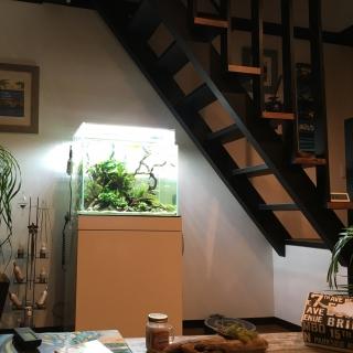 Sayakaさんのお部屋写真 #1