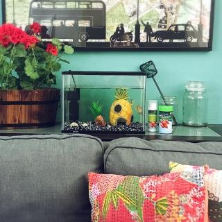 Spiceさんのお部屋写真 #1